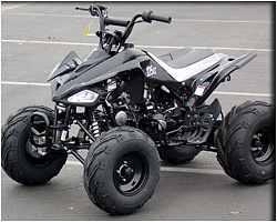 125cc Atv For Sale >> Kid Atvs Diamondback 125 Auto Transmission With Reverse Atv Taotao